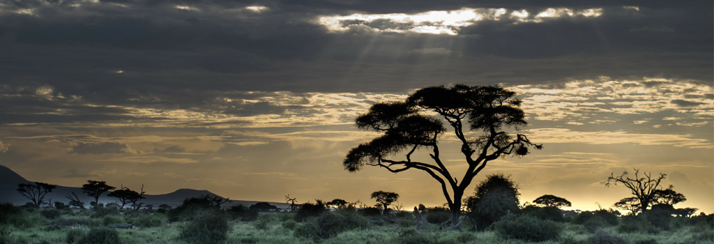East Africa sunset landscape