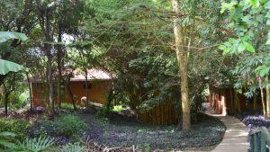 farmhouse-again