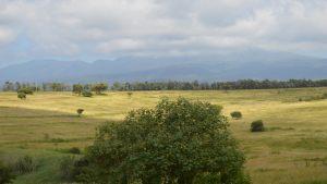 farmhouse-view
