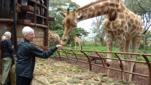 marney-feeding-giraffe