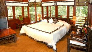 treehouse-interior